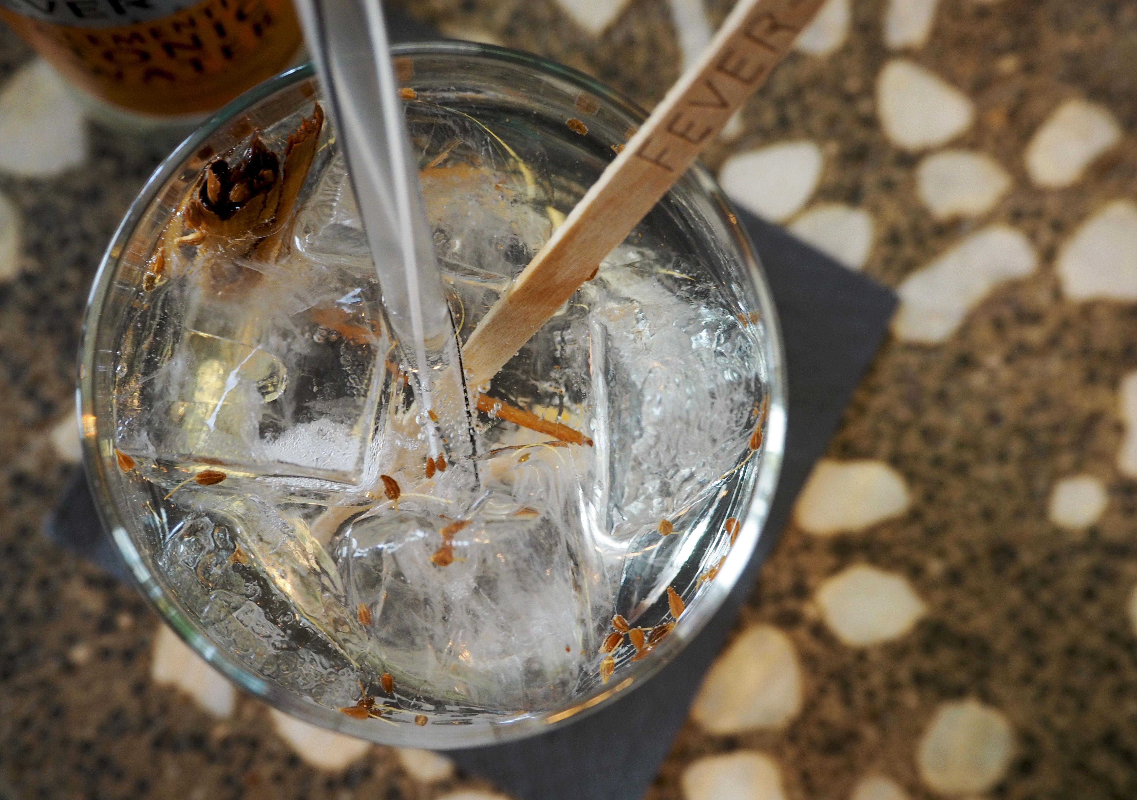 skully tangerine gin tonic