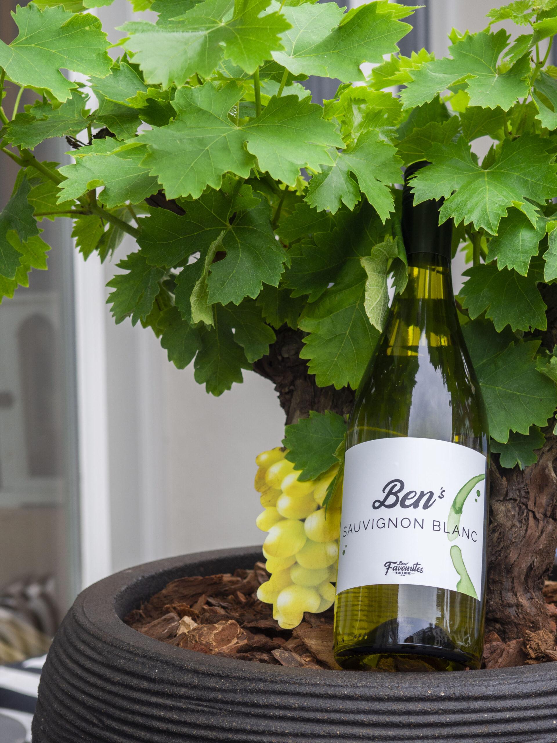 ben's favourites wine & more den bosch