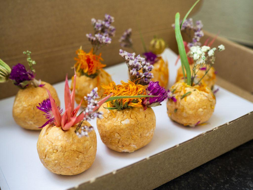 Maak je eigen FlowerBombs met de online workshop van Werk aan de Winkel